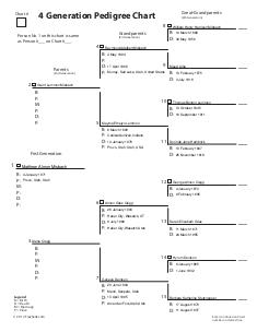 Genealogical chart template